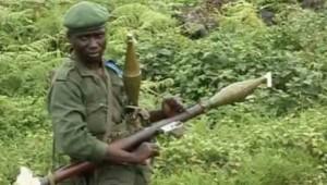 FARDC CNDP RDC RD Congo