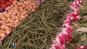 Rencontre avec des producteurs de fruits et légumes