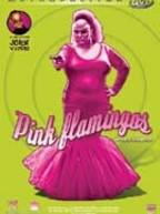 pink_flamingos_z2