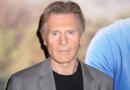 Liam Neeson lors de l'avant première de Ted 2, à New York en juin 2015
