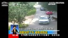Chine : un tigre tue une femme dans un parc zoologique