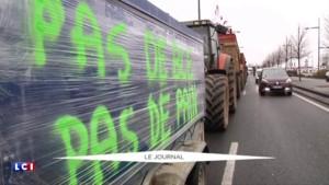Crise agricole : la guerre des prix entre agriculteurs et grande distribution fait rage