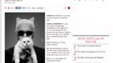 Karl Lagerfeld suit le compte Twitter de sa chatte Choupette