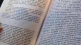 Flammarion pourra bien devenir Gallimard