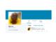 Il attend 7 ans pour faire la meilleure blague de Twitter