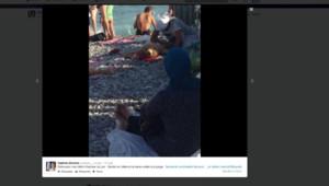 morano capture écran twitter femme voilée plage