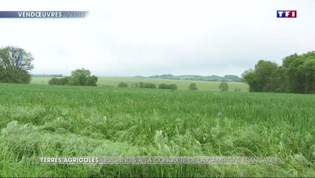 Les Chinois partent à l'assaut des terres agricoles