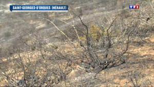 Le 13 heures du 14 mai 2014 : Des �nomies d%u2019eau dans l%u2019H�ult avec la crainte des incendies - 867.6721900024413
