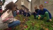 COP 21 : ces élèves se mettent au vert pour l'avenir de la planète