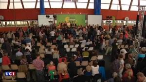 EELV : David Corman, nouveau patron du parti
