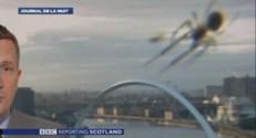 Une araignée s'invite sur le plateau de la BBC.