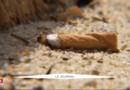La plage de Cap Coz, l'une des rares plages non-fumeur de France cet été