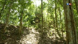 Le 20 heures du 3 mai 2013 : Guatemala : �a d�uverte d'une cit�aya disparue - 1877.7079999999999