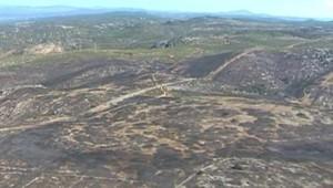 A Vendémian, dans l'Hérault, les incendies ont ravagé 200 hectares en août 2006 (TF1/LCI)