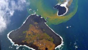 La petite île émergée mi-novembre à côté de l'île de Nishinoshima au large du Japon, photographiée le 26 novembre 2013 par les garde-côtes japonais.