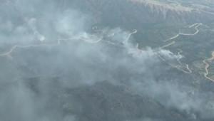 Une série d'incendies dans le Colorado a provoqué l'évacuation de plus d'un millier de maisons. Le 25/06/2012.