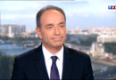 Le 20 heures du 17 mai 2013 : Mariage gay : Jean-Frans Copegrette la dsion du Conseil constitutionnel - 1063.0960000000005