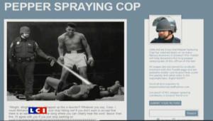 """John Pike est devenu le policier du web, après avoir aspergé de gaz des étudiants du mouvement des """"Indignés"""" sur le campus d'une université californienne."""