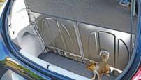 Toyota Aygo attaquée par des écureuils au Royaume-Uni