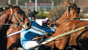 PMU courses chevaux jockey paris sportifs jeux d'argent