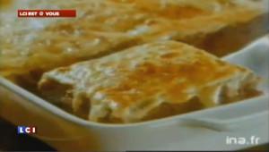 Pub pour les lasagnes Findus en 1992 : le slogan... troublant