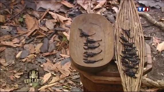 Épreuves/images et clichés de l'aventure. - Page 3 Koh-lanta-vietnam-au-total-ce-sont-7-scorpions-que-boris-devra-10331491vbrmh_1879