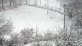 Neige : 2 morts et 100.000 foyers sans courant