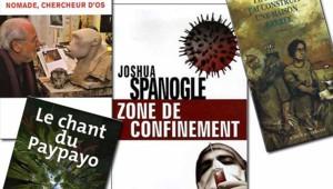 TF1/LCI livres chroniques
