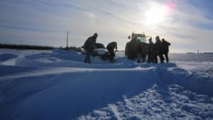 neige-senneviere-6