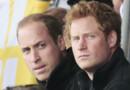 Les princes William et Harry lors des Invictus Games à Londres en septembre 2014