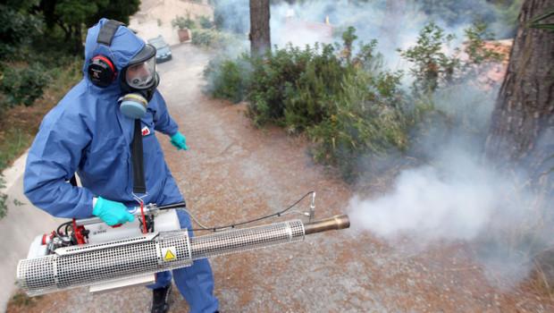 Pulvérisation d'insecticides, Archives