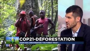 Tous acteurs du changement: The Forest Trust, le business responsable