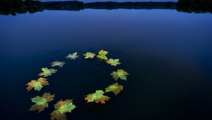 drapeau europe ue eau