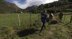 Le 13 heures du 23 octobre 2014 : Patrimoine et traditions du B�n : Les fermes b�naises (4/5) - 2196.6648521728516