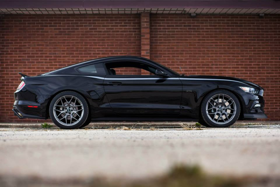 2014 - [Ford] Mustang VII - Page 11 Ford-mustang-rtr-2015-06-11296509xzzzs