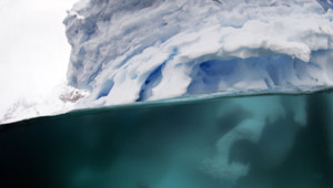 L'Antarctique en 2012