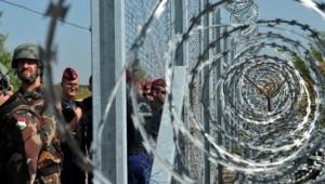 frontière serbie hongrie migrants