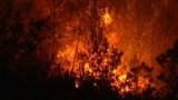 Plus de 900 ha ravagés par le feu dans les Bouches-du-Rhône