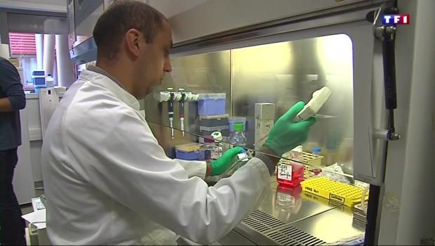 """Mélanome: une molécule capable de """"stresser"""" les cellules cancéreuses"""
