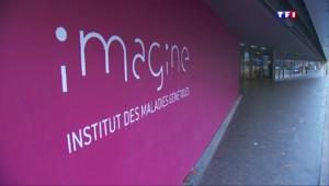 """""""Imagine"""", l'institut qui veut accélérer les traitements des pathologies rares"""