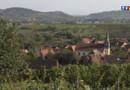 La route des vins d'Alsace : Wangen