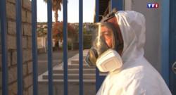 Le 13 heures du 31 juillet 2015 : En Corse, la bactérie Xylella fastidiosa progresse dangereusement - 944
