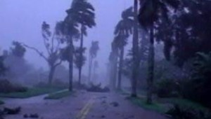 wilma cyclone
