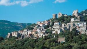 Muscat-du-cap-Corse