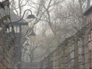 Le 20 heures du 25 janvier 2015 : Auschwitz entre les mains d'une fondation soucieuse de conserver l'authenticité des lieux - 1441.129