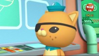 Octonauts en streaming