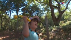 Le 13 heures du 10 août 2015 : Vacances : les activités sportives de la Provence verte - 1052
