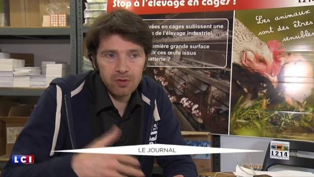 """Oeufs de poules grouillant de poux : L214 dénonce """"un problème de santé publique"""""""