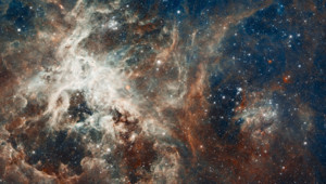 Panorama de la nébuleuse de la Tarentule pris par le télescope Hubble de la NASA.