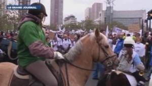 Manif des poneys